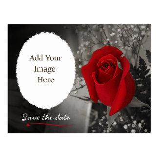 Het elegante Rood nam sparen de Foto van de Datum Briefkaart