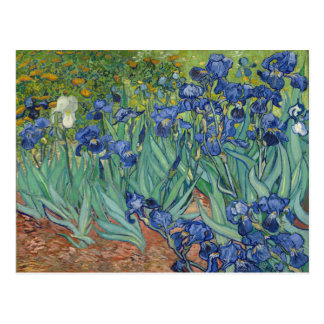 Het Fijne Art. van GalleryHD van de Irissen van Briefkaart