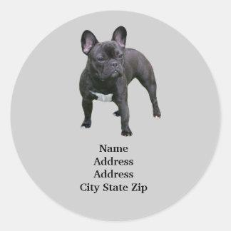Het Franse Etiket van het Adres van de Buldog