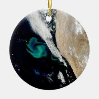 Het fyto Ornament van Kerstmis van de Bloei