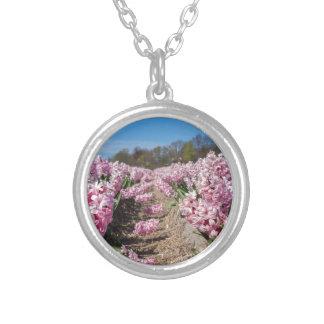 Het gebied van bloemen met roze hyacinten in zilver vergulden ketting