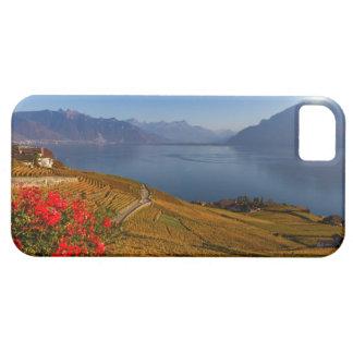 Het gebied van Lavaux, Vaud, Zwitserland Barely There iPhone 5 Hoesje