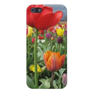 Het Gebied van tulpen iPhone 5 Hoesje