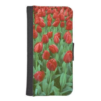 Het gebiedsbloei van de tulp in de lente iPhone 5 portemonnee hoesje