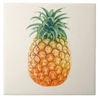 Het geïllustreerde ontwerp van de Ananas Keramisch Tegeltje