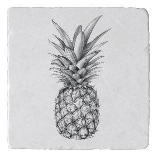 Het geïllustreerde ontwerp van de Ananas Trivet