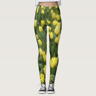 Het gele Gebied Legging van Tulpen