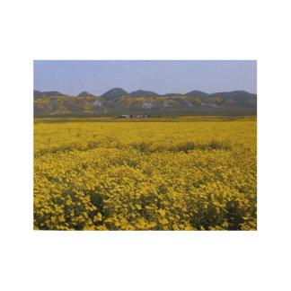Het gele Landschap van het Gebied Wildflower Houten Poster