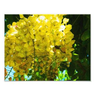 Het gele Tropische Poster van Bloemen