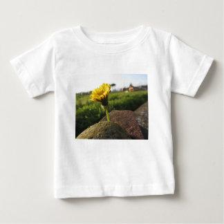 Het gele wildflower groeien op stenen bij baby t shirts