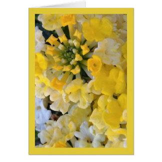 Het gelukkige Gele Lied van de Bloei van Sol. Het Kaart