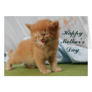 Het gelukkige Katje van het Moederdag Wenskaart