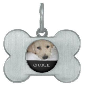 Het gepersonaliseerde Label van de Hond van de Fot Huisdieren Naamplaatje