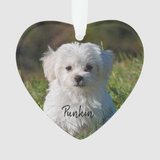 Het gepersonaliseerde ornament van de hondfoto