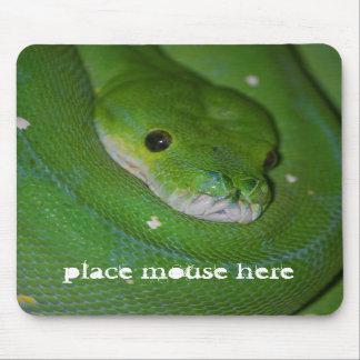 Het gerolde Exotische Groene Stootkussen van de Mu Muismat