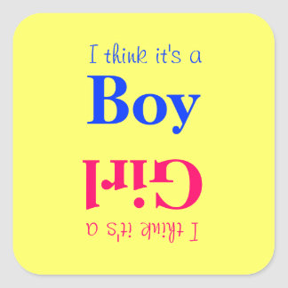 Het Geslacht van het Baby van de jongen of van het Vierkante Stickers
