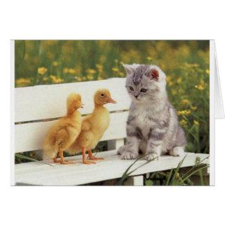 Het gesprekskatje van Duckheap en van de vriend Kaart