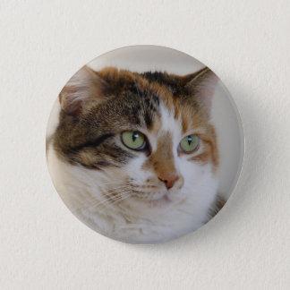 Het gezicht van de de gestreepte katkat van het ronde button 5,7 cm