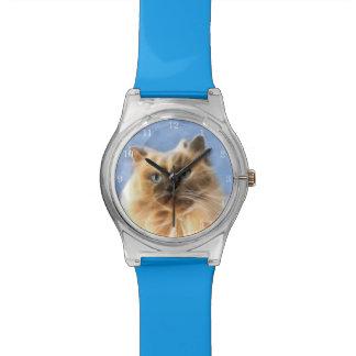 Het gezicht van de het katkat van Himalayan Horloge