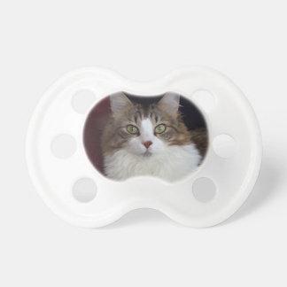 Het Gezicht van de kat Fopspeentjes