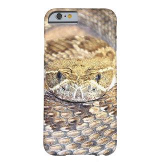 Het gezicht van de ratelslang barely there iPhone 6 hoesje