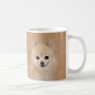 Het gezicht van Pomeranian Koffiemok