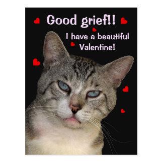 Het goede Briefkaart van de Valentijnsdag van de