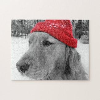 Het Golden retriever van de Hond van de ski Puzzel