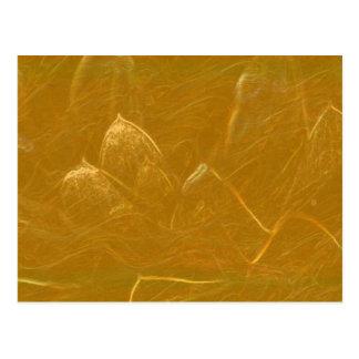 Het gouden Blad van het n- Koper:  Lotus Briefkaart
