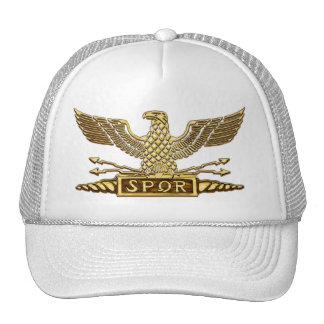Het gouden Roman Legioen van Eagle Mesh Petten