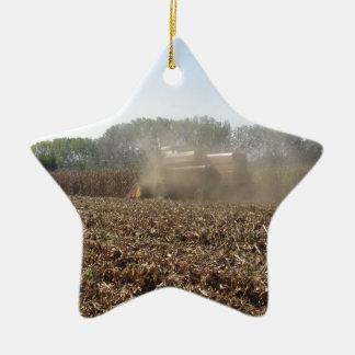 Het graangewas van het maaidorsen op gecultiveerd keramisch ster ornament