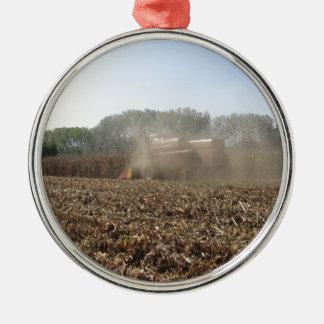Het graangewas van het maaidorsen op gecultiveerd zilverkleurig rond ornament