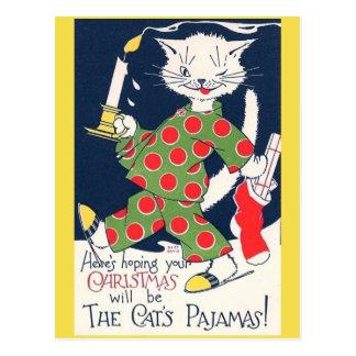 Het Grappige Briefkaart van de Pyjama van de Kat