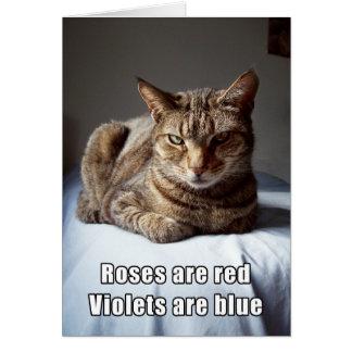 Het grappige gedicht van de Kat van Valentijn Wenskaart