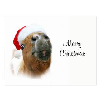 Het grappige paard van Kerstmis Briefkaart