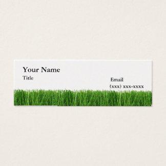 Het gras is Groener Mini Visitekaartje Mini Visitekaartjes