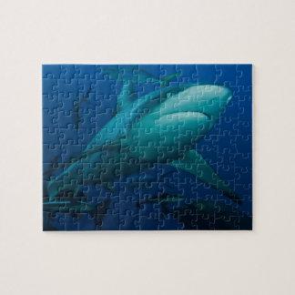 Het grijze Barrièrerif van de Haai van de Ertsader Puzzel
