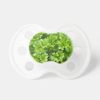 Het groene patroon van het peterseliekruid fopspeentjes