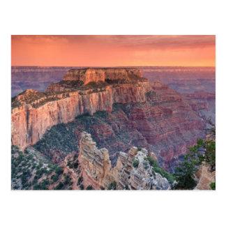 Het grote Nationale Park van de Canion, Arizona Briefkaart