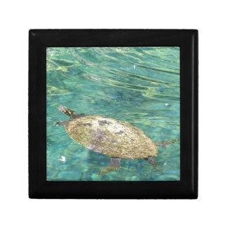 het grote rivierschildpad zwemmen decoratiedoosje