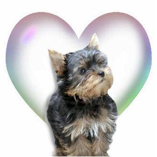 Het Hart van Yorkshire Terrier Staand Fotobeeldje