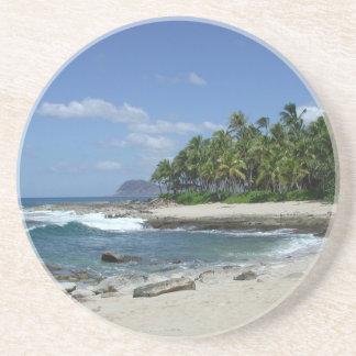 Het Hawaiiaanse Onderzetter van de Kust