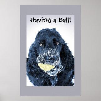 Het hebben van een Bal! Poster