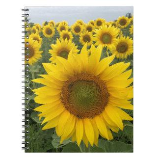 Het heldere Gele Notitieboekje van de Foto van Ringband Notitieboek