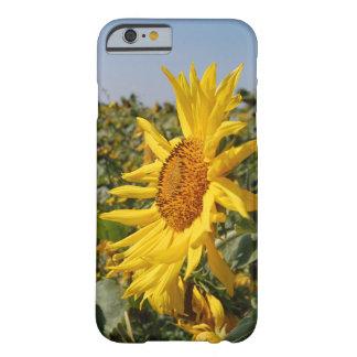 Het Hoesje van de zonnebloem voor Iphone 6/6s