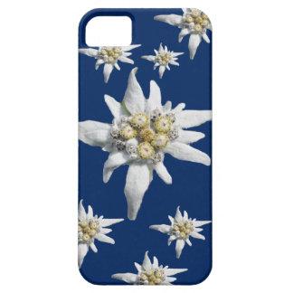 Het Hoesje van het edelweiss op donkerblauwe