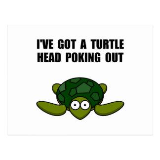 Het Hoofd die van de schildpad uit porren Briefkaart