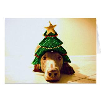 Het Hoofd van de kerstboom Briefkaarten 0
