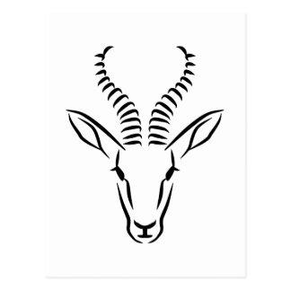 Het hoofd van de springbok briefkaart