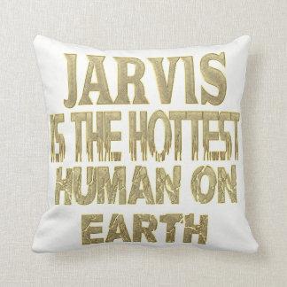 Het Hoofdkussen van Jarvis Sierkussen